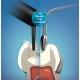 VisCalor bulk – termo-viskozinis (šilumoje takus) kompozitas-bazė